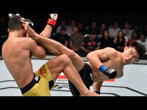 Top Finishes From UFC 265 Fighters